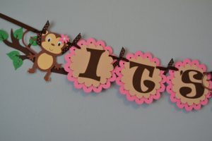 Monkey Girl Baby Shower Decorations